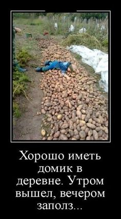 Hilarious, Funny, Entertaining, Memes, Google, Pictures, Humor, Jokes, Meme