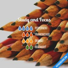 Study and Focus - Essential Oil Diffuser Blend