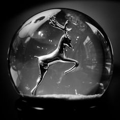 Snow Globe | Flickr - Photo Sharing!