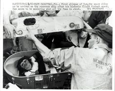 On January 31, 1961. Ham as he arrived back on the recovery ship after his historic mission to make him the first chimp in space.  He later went to live at the National Zoo in Washington for 17 years and died at North Carolina Zoo at the age of 25.