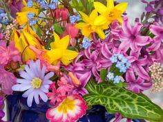 Eu merecia flores somente por ser uma 5 feira... =(