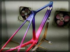 custom painnt GIANT TCR