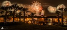 Disney Fireworks, Polynesian Resort, Walt Disney World, Disneyland, Earth, Flowers, Royal Icing Flowers, Disney Resorts, Flower