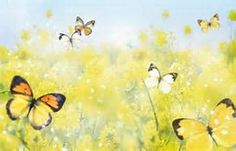 butterfly background images - Bing Images