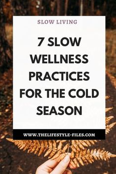 Slow wellness practices for the cold season - The Lifestyle Files