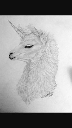 Llamacorn (llama+unicorn=llamacorn) yesssss i want to draw this!
