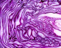 Boqueria Red Cabbage