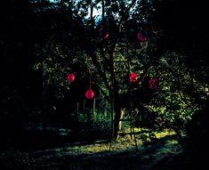 © Astrid Kruse Jensen