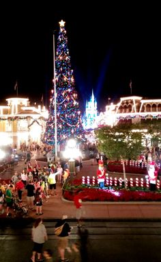 The 5-story tall Christmas tree that greeted the Mitchell's in Disney's Main Street square.