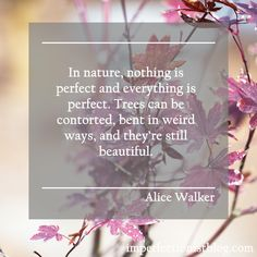 """""""In nature, nothing is perfect and everything is perfect. Trees can be contorted, bent in weird ways, and they're still beautiful."""" – Alice Walker  http://imperfectionistblog.com/quotes/"""