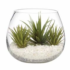 A terrarium is a great way to add a splash of greenery to your home