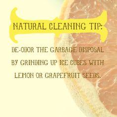 carpet cleaning, green carpet cleaning, carpet cleaner, oxifresh.com