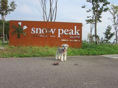 2013夏キャンプ snowpeak field