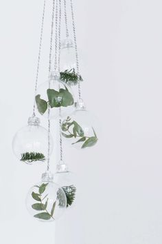 Simple, clear Christmas baubles with different winter plants Minimalist Christmas decorations at their best. Noel Christmas, Winter Christmas, All Things Christmas, Christmas Crafts, Christmas Ornaments, Glass Ornaments, Christmas Trends, Simple Christmas Decorations, Modern Holiday Decor