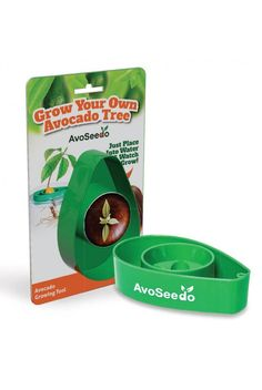 Super fun gift for someone who lovessss avocados (we all know one!). Now they can grow their own!