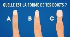 Que révèle laforme detes doigts ?