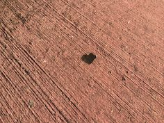 Heart shaped piece in the road