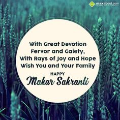 With Great Devotion, Fervor and Gaiety,  With Rays of Joy and Hope, Wish You and Your Family, HAPPY MAKAR SANKRANTI..!!