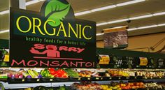 Could it be the reason why Monsanto is going organic? According to Organic Trade Association (OTA), sales of organic food in the United States jumped to $35.1 billion in 2013, up 11.5% from the previous year's $31.5 billion and the fastest growth rate in five …Sorry Monsanto: Sales of Organic Food Jumped To $35.1 Billion! February 19th, 2015 .