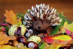 👌 Brown Porcupine Artwork - download photo at Avopix.com for free    🆓 https://avopix.com/photo/34424-brown-porcupine-artwork    #seed #buckeye #brown #fruit #butterfly #avopix #free #photos #public #domain