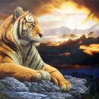 Original North Korean Oil Painting tiger By Cui Nanzhi First-Class artists Merit Artist Mansudae Art Studio born in Pyongyang graduated from Pyongyang Art university specialized in oil painting work in Pet Tiger, Japanese Embroidery, Animal Paintings, Oil Painting On Canvas, Embroidery Stitches, Korean, History, University, Hands
