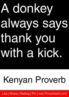 A donkey always says thank you with a kick. - Kenyan Proverb #proverbs #quotes