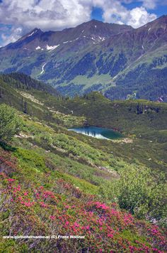 Breathe in the fresh mountain air while hiking the Austrian Alps. Visit Austria, Austria Travel, Salzburg, Walking Holiday, Hiking Tours, Travel Abroad, Heaven On Earth, Adventure Is Out There, Alps