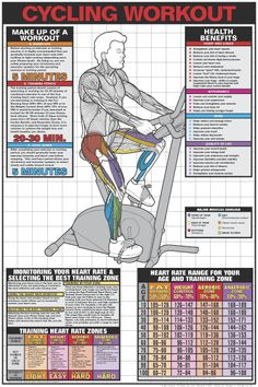 Exercise Bikes.Spin Your Way To Fit.Awesome Exercise To Get Fit. Visit http://topexercisebikesreviews.com/
