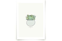 Succulent figure 1 Wall Art Prints by Stacey Meacham at minted.com