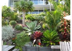 1000 images about landscaping ideas on pinterest modern