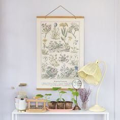 Found and curated by Lindsay, these vintage reproductions are carefully reproduced (with permission) to retain the quality and character of the original piece. It's the perfect vintage find with customizable sizes and finishes for your space! Hanging Canvas & Kits come in four finishes.