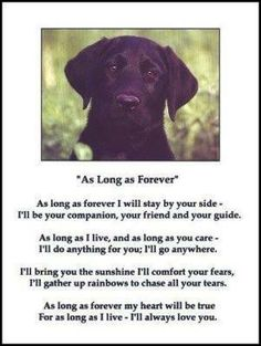 This goes both ways from my pups to me and me to my pups.. Cannot imagine my life without out my fur balls <3 <3 <3