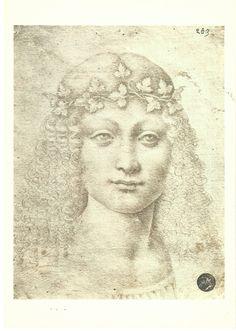 Baco joven, Leonardo Da Vinci