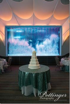 We love this unique wedding cake idea. Have your reception at the Newport Aquarium in Kentucky. The bubble wall is too fun! Photo by Pottinger Photography www.pottingerphoto.com Cake by Maribelle Cakery Linens by Prime Time Party Rental