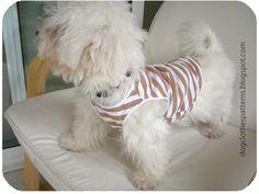 Free Dog Clothes Patterns: Dog T Shirt Pattern