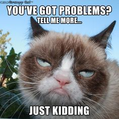"""Here's great collection of some Grumpy Cat Memes in People style. Just read out these """"Top 22 Grumpy Cat Memes People"""" and get some fun and laughing point for laugh. Grumpy Cat Quotes, Funny Grumpy Cat Memes, Funny Animal Memes, Funny Animal Pictures, Funny Cats, Funny Animals, Cute Animals, Funny Memes, Grumpy Kitty"""