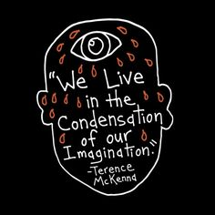 We live in the condensation of our imagination. — Terence McKenna