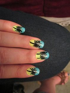 Palm Trees (June 29, 2013)