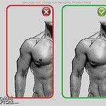 Anatomy 4 Sculptors by Anatomy 4 Sculptors