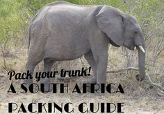 Packing carry-on only for a safari in South Africa... could you do it? I know I could!
