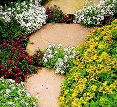 Живые дорожки.Ландшафтная студия Сказка в саду. Ландшафтный дизайн в Ставрополе