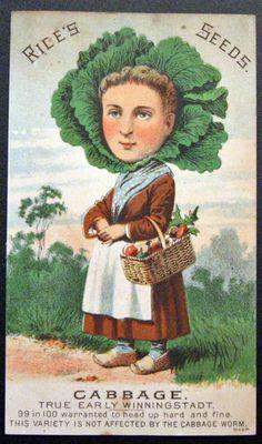 Vegetable people trade card
