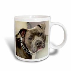 3dRose PIT Bull With Chain Collar, Ceramic Mug, 11-ounce