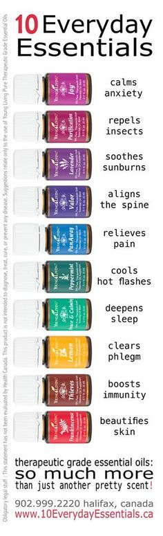 Young Living Essential Oils: Everyday Essential Oils