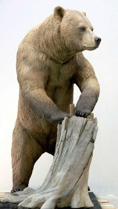 Sculpted touchable grizzly bear for the San Diego Zoo | Blue Rhino Studio