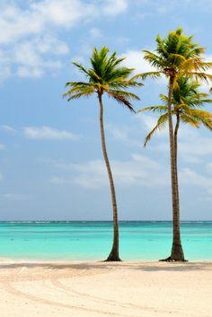 Dromen bestaan! Geniet 9 dagen lang van een 5***** resort aan het strand met All Inclusive! Dit kan allemaal op de Dominicaanse Republiek  Kijk snel: https://ticketspy.nl/all-inclusive/luxe-naar-de-dominicaanse-republiek-all-inclusive-9-dagen-va-e770/