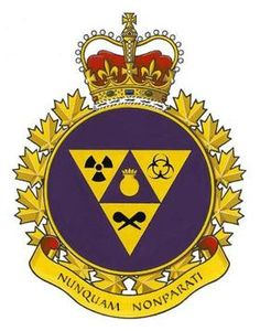 Canadian Joint Incident Response Unit - Wikipedia Canadian Army, Biologique, Crests, Special Forces, The Crown, Armed Forces, No Response, Arms, The Unit