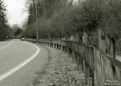 ~Guard Rail~By Ernie Kasper #rail #guardrail #road #wood #cables #canadianphotography