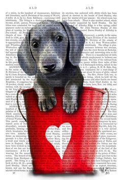 Fab Funky Buckets Of Love Dachshund Puppy Canvas Art Black, Trademark Fine Art Scottish Terrier, Grey Dog, Dachshund Love, Dachshund Puppies, Daschund, Dog Illustration, Tier Fotos, Wrapped Canvas, Graphic Art