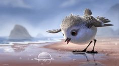 Watch a Bird Overcome Fear in Pixar's Heart-Melting New Short Film Piper Pixar Animated Movies, Hd Movies, Movies To Watch, Movies Online, Piper Pixar, Movie Talk, Cute Birds, Jolie Photo, About Time Movie